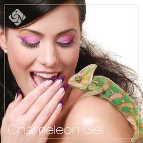 7796_4635_chameleon_gel_image_1