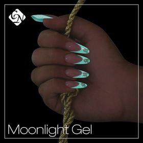 8636_moonlight